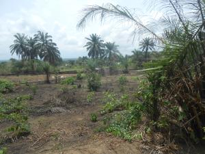 Residential Land Land for sale Aka Etinan Road, Uyo Uyo Akwa Ibom