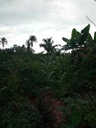 Land for sale Atimbo Calabar Cross River