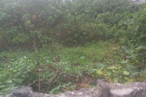 1 bedroom mini flat  Land for sale New Airport Rd, Tam-David West Boulevard  East West Road Port Harcourt Rivers