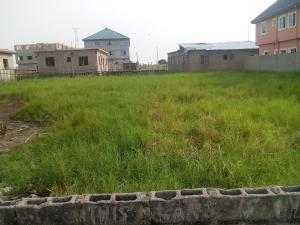 Land for sale NEWSITE Lagos - 1