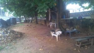 Land for sale - Baruwa Ipaja Lagos