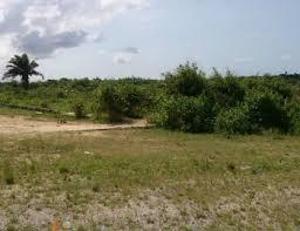 Land for sale glover road, ikoyi lagos Ikoyi Lagos - 1