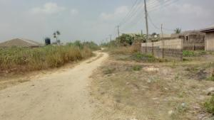 Land for sale Logulogu Agric Ikorodu Lagos