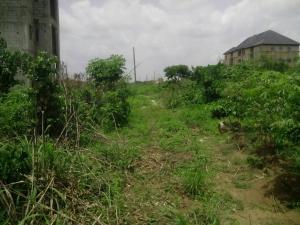 Land for sale Umudoche Umuoma Nekede, Owerri West, Nekede, Owerri, Imo Owerri Imo - 1