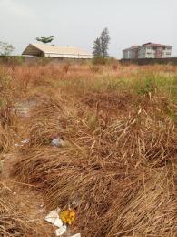 Mixed   Use Land Land for sale Osborne phase 2, Block 9, Plot 22 Osborne Foreshore Estate Ikoyi Lagos