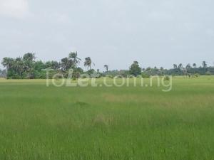 Land for sale Ikorodu road opposite the brt office close to Ogolonto in Ikorodu Lagos Ikorodu Ikorodu Lagos