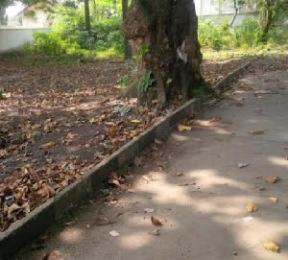Mixed   Use Land Land for sale directly along Mobolaji Johnson road, Old Ikoyi Ikoyi Lagos