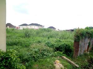 Land for sale Medina estate Atunrase Medina Gbagada Lagos - 0