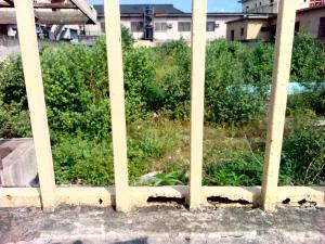 Land for rent Ogudu Ojota Lagos