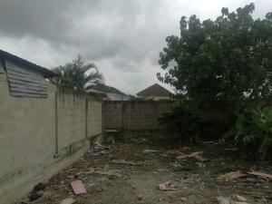 Residential Land Land for sale behind Newcastle hotel, Imou Omage Street off Phillips, Anthony Village Maryland Lagos