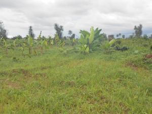 Residential Land Land for sale Ifa Atai, Uyo Akwa Ibom