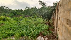 "Land for sale Area ""W"" Owerri Imo"