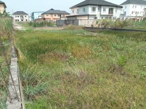 Serviced Residential Land Land for sale Diamond Estate Monastery road Sangotedo Lagos