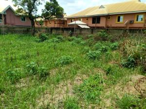Mixed   Use Land Land for sale Along ifite road  Awka South Anambra