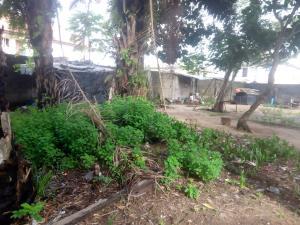Land for sale odofin street Igbogbo Ikorodu Lagos