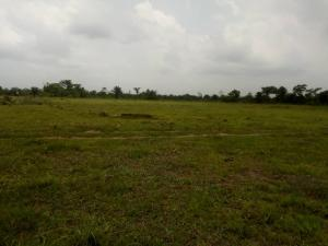 Land for sale Ibeju-agbe town Ibeju-Lekki Lagos