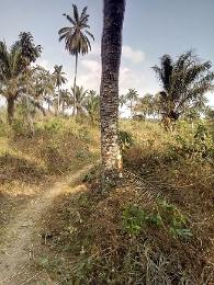 Residential Land Land for sale Okpuno Town Awka North Anambra