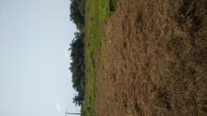Land for sale Along Sokoto road, Atan Agbara Agbara-Igbesa Ogun