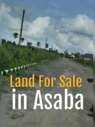 Residential Land Land for sale Okpanam road, Anwai, Infant jesus, summit, Ibusa rd Asaba Delta
