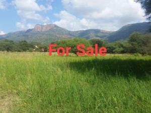 Mixed   Use Land Land for sale Near Eleko Beach Junction. Eleko Ibeju-Lekki Lagos