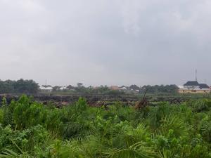 Serviced Residential Land Land for sale Treasure Island Estate, Adjacent Shoprite, Sangotedo Ajah Lagos