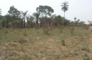 Land for sale Asaba, Oshimili South, Delta Oshimili Delta - 0