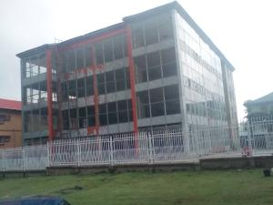 Commercial Property for sale wuse 2 Wuse 2 Abuja