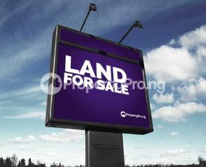 Land for sale directly facing the road beside Okota Grammar School by Ago Roundabout, Okota Lagos