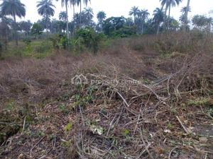 Land for sale Benin-auchi Road, Oluku Bypass Ute Community, Ward 6 Uhunmwode Lga, Uhunmwonde   Uhunmwonde Edo