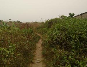 Mixed   Use Land Land for sale idimu Egbe Ikotun/Igando Lagos
