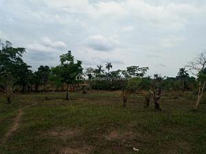 Mixed   Use Land Land for sale    Akpoga Nike,, Emene Enugu Enugu
