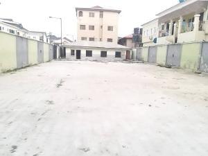 Mixed   Use Land Land for rent Osapa london Lekki Lagos