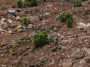 Mixed   Use Land Land for sale    Shomolu Lagos