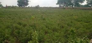 Land for sale Asokoro, Abuja, Abuja Asokoro Abuja