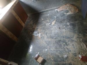 1 bedroom mini flat  Mini flat Flat / Apartment for rent Alimosho Iyanaipaja Extension by Pius Ezi st at Issac ogunshola Estate Egbeda Alimosho Lagos