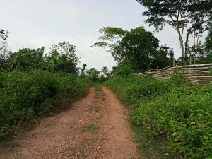Commercial Land Land for sale Olokuta Village near Idi Ayunre off Ibadan-Ijebu ode Road Ibadan Oyo
