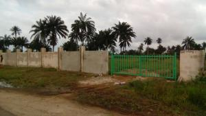 Land for sale 15 mins from new ph airport Igwurta-Ali Port Harcourt Rivers