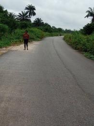 Land for sale Okomoko Etche Rivers