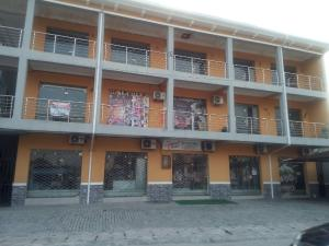 Commercial Property for rent Agungi Agungi Lekki Lagos