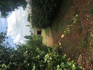 Mixed   Use Land Land for sale Nza Street Enugu Enugu
