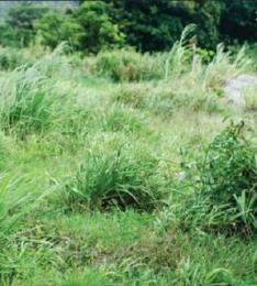 Mixed   Use Land Land for sale asejire Isokan Osun
