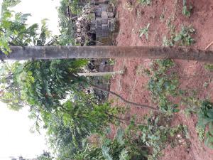 Land for sale Merotiwon Street Obasanjo Farm Ado Odo/Ota Ogun