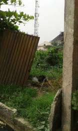 Land for sale - Ago palace Okota Lagos