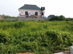 Mixed   Use Land Land for sale By Rasaki Bus stop Bucknor Isolo Lagos