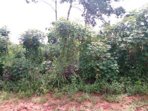 1 bedroom mini flat  Land for sale Ezimezi Amawbia. Awka South Anambra