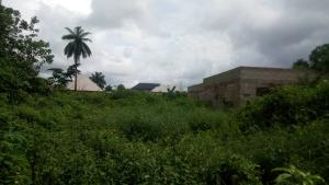 Mixed   Use Land Land for sale Inside No. 5 Busstop Naze Owerri Owerri Imo