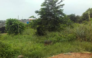 Residential Land Land for sale Olisado Village Parafa, Off Itoikin Road, Ikorodu Ikorodu Ikorodu Lagos