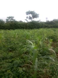 Land for sale Ifelodun Ogun Waterside Ogun