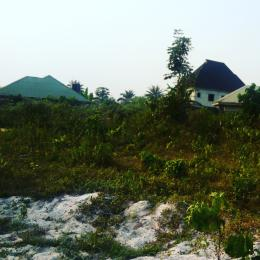 Mixed   Use Land Land for sale Behind Petronella Nig. Ltd,  By Eneka/Igwuruta Airport Road, Eneka Port Harcourt Rivers