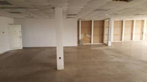 Office Space for rent ---- Saka Tinubu Victoria Island Lagos - 1
